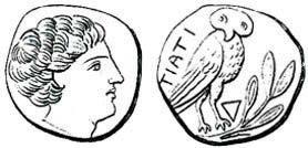 Spinelli 1820, tav. 8, n. 1