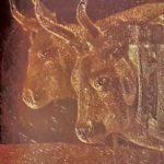 Placca calcografica del 50 lire Buoi, particolare.