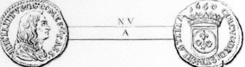 Ingrandimento del Luigino disegnato in TAV. VIII N V dell'Olivieri.