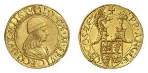 Lotto 560 - Milano, Gian Galeazzo Maria Sforza, doppio ducato